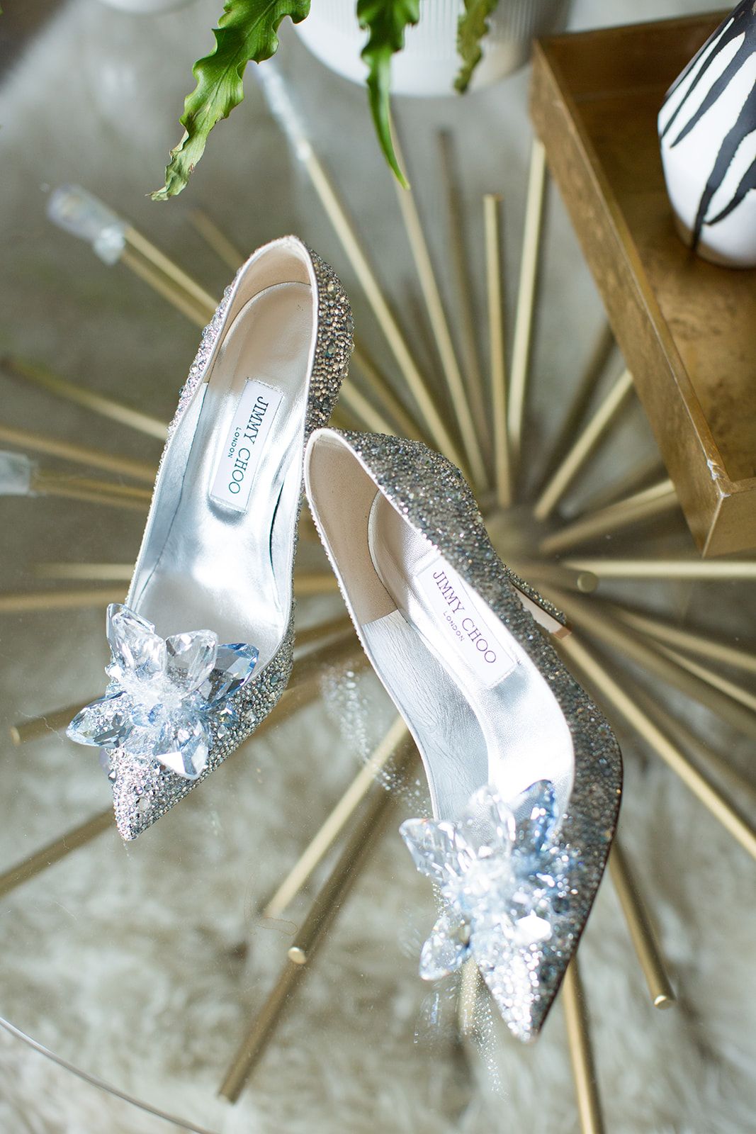 ALIA Crystal Covered Pointy Toe Pumps by Jimmy Choo, featured in these Santa Barbara boudoir photos.
